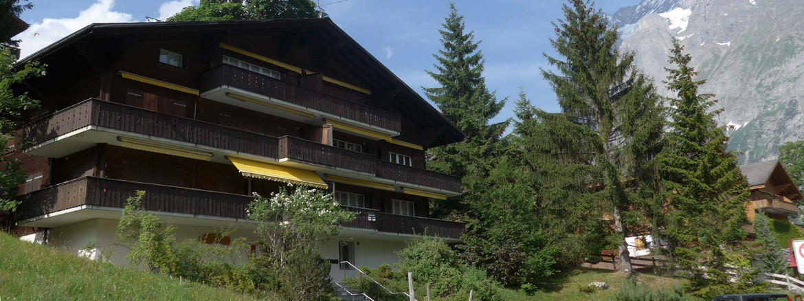 Apartment in Grindelwald - Chalet Bodmisunne